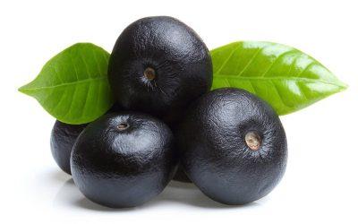 Acai Berry – poklad z amazonie